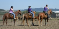 FitzGerald Farms | Youth Equestrian Camp