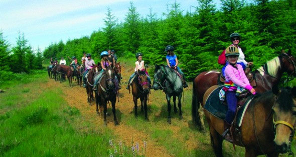 FitzGerald Farms | Group Horseback Rides