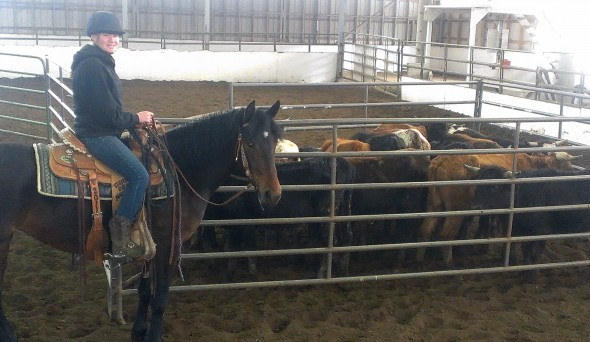 FitzGerald Farms   Team Penning Instruction and Events