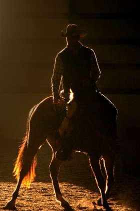 Josh FitzGerald   Horse Training